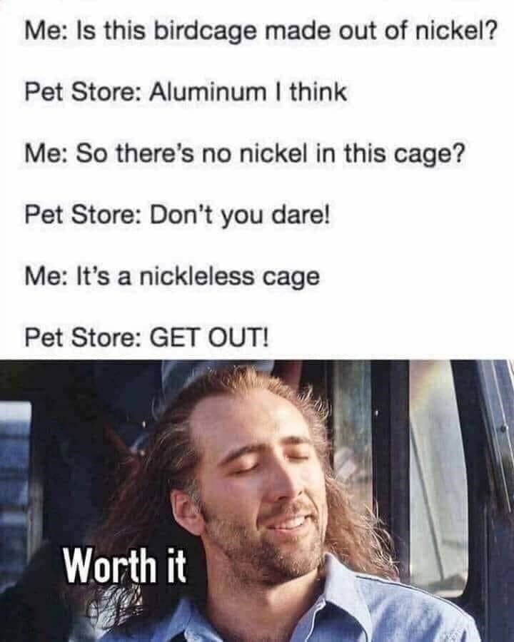 Forehead - Me: Is this birdcage made out of nickel? Pet Store: Aluminum I think Me: So there's no nickel in this cage? Pet Store: Don't you dare! Me: It's a nickleless cage Pet Store: GET OUT! Worth it
