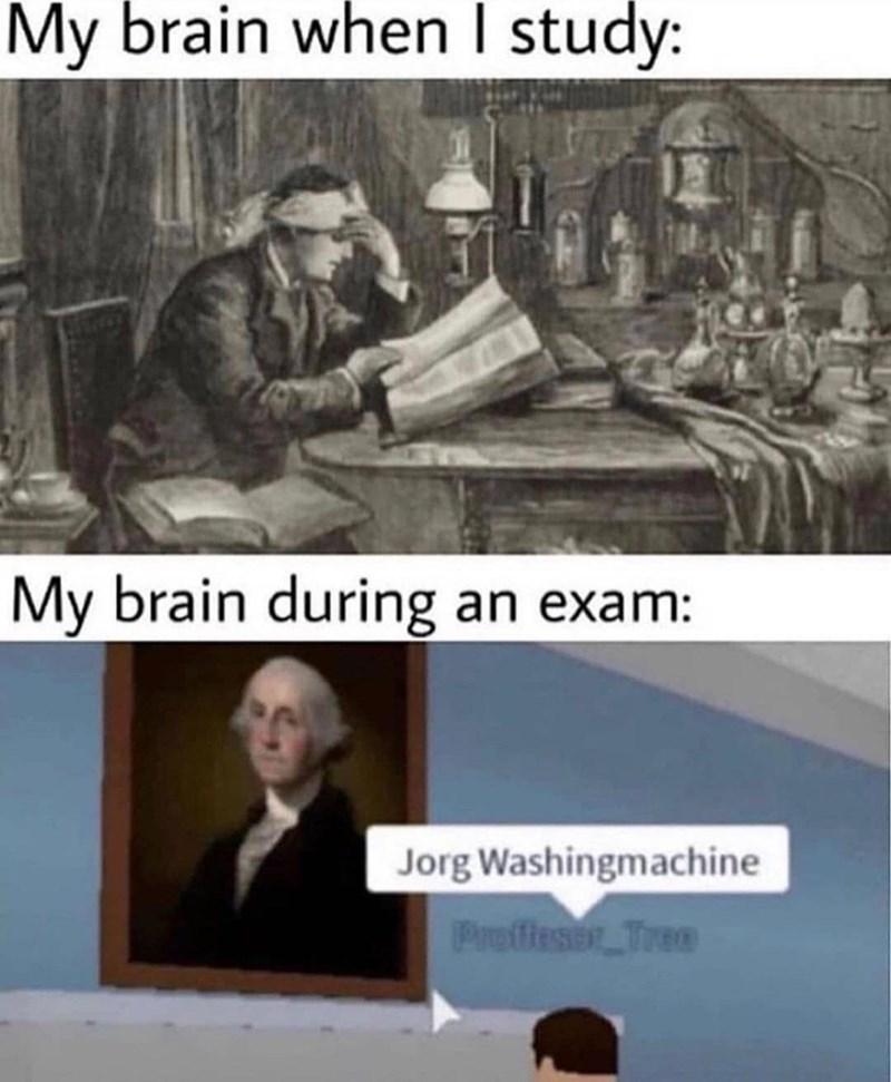 Outerwear - My brain when I study: My brain during an exam: Jorg Washingmachine Profieser Trea