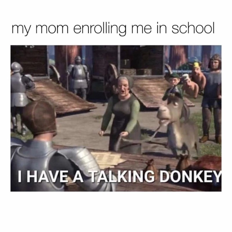 Outerwear - my mom enrolling me in school I HAVE A TALKING DONKEY