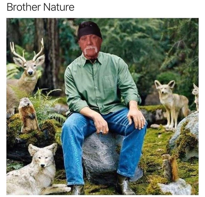 Clothing - Brother Nature SamonWithoutThel