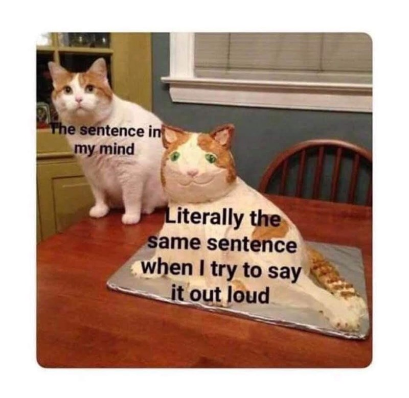 Cat - The sentence in my mind Literally the same sentence when I try to say it out Joud
