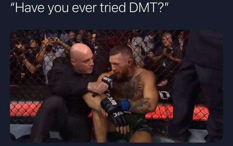 """Muscle - """"Have you ever tried DMT?"""" UFC"""