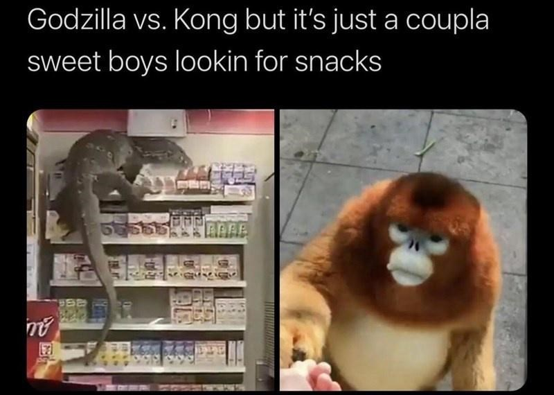 Organism - Godzilla vs. Kong but it's just a coupla sweet boys lookin for snacks