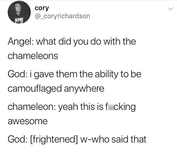 Font - cory @_coryrichardson Angel: what did you do with the chameleons God: i gave them the ability to be camouflaged anywhere chameleon: yeah this is f cking awesome God: [frightened] w-who said that