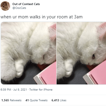 Cat - Out of Context Cats @OocCats when ur mom walks in your room at 3am 6:39 PM - Jul 9, 2021 - Twitter for iPhone 1,565 Retweets 41 Quote Tweets 6,413 Likes