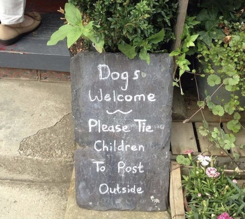 Plant - Dog s. Welcome Please Tie Children To Post Outside