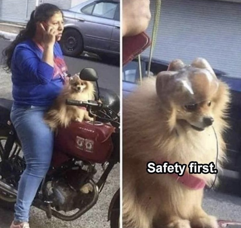 Clothing - Safety first.