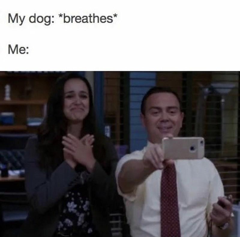 Smile - My dog: *breathes* Me: