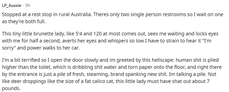 """Font - LP_Aussie · 9h Stopped at a rest stop in rural Australia. Theres only two single person restrooms so I wait on one as they're both full. This tiny little brunette lady, like 5'4 and 120 at most comes out, sees me waiting and locks eyes with me for half a second, averts her eyes and whispers so low I have to strain to hear it """"I'm sorry"""" and power walks to her car. I'm a bit terrified so I open the door slowly and im greeted by this hellscape: human shit is piled higher than the toilet, wh"""