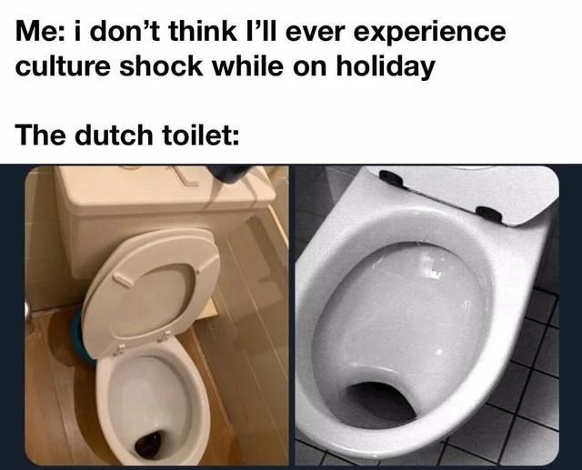 Toilet seat - Me: i don't think l'll ever experience culture shock while on holiday The dutch toilet: