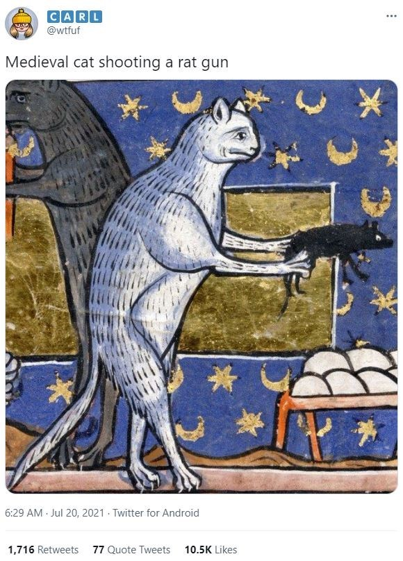 Organism - CARL @wtfuf Medieval cat shooting a rat gun 6:29 AM Jul 20, 2021 - Twitter for Android 1,716 Retweets 77 Quote Tweets 10.5K Likes