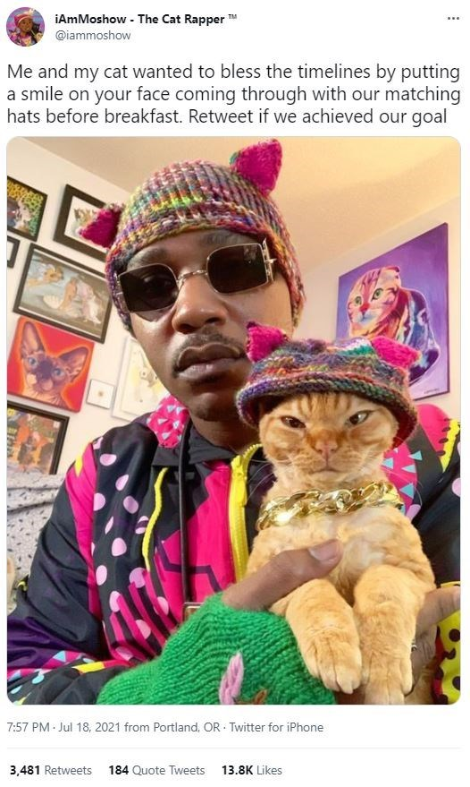 Glasses - iAmMoshow - The Cat Rapper TM ... @iammoshow Me and my cat wanted to bless the timelines by putting a smile on your face coming through with our matching hats before breakfast. Retweet if we achieved our goal 7:57 PM Jul 18, 2021 from Portland, OR · Twitter for iPhone 3,481 Retweets 184 Quote Tweets 13.8K Likes