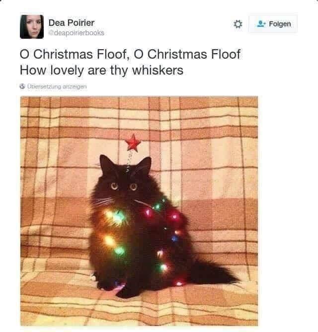 Cat - Dea Poirler Folgen ndeapairierbocks O Christmas Floof, O Christmas Floof How lovely are thy whiskers 3 Dbiersetzung anzeigen