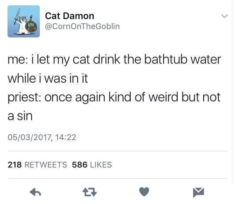 Font - Cat Damon @CornOnTheGoblin me: i let my cat drink the bathtub water while i was in it priest: once again kind of weird but not a sin 05/03/2017, 14:22 218 RETWEETS 586 LIKES