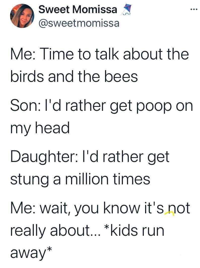 Font - Sweet Momissa ... @sweetmomissa Me: Time to talk about the birds and the bees Son: l'd rather get poop on my head Daughter: l'd rather get stung a million times Me: wait, you know it's not really about... *kids run away*