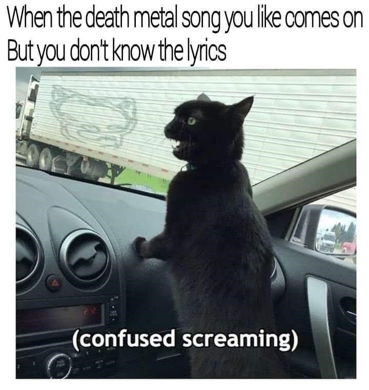 Photograph - When the death metal song you like comes on But you don't know the lyrics (confused screaming)