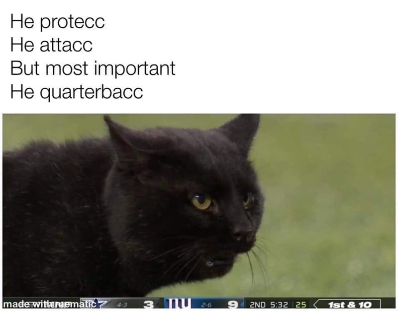 Cat - He protecc He attacc But most important He quarterbacc made witharmematic 3 TU 2-6 4-3 2ND 5:32 25 1st & 10