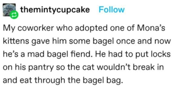 Font - themintycupcake Follow My coworker who adopted one of Mona's kittens gave him some bagel once and now he's a mad bagel fiend. He had to put locks on his pantry so the cat wouldn't break in and eat through the bagel bag.