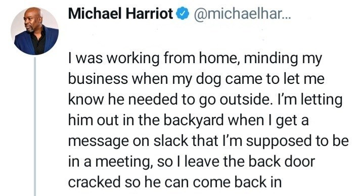 Gesture - Michael Harriot O @michaelhar. I was working from home, minding my business when my dog came to let me know he needed to go outside. I'm letting him out in the backyard when I get a message on slack that I'm supposed to be in a meeting, so I leave the back door cracked so he can come back in