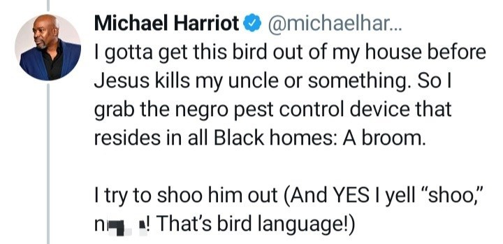"""Organism - Michael Harriot O @michaelhar. I gotta get this bird out of my house before Jesus kills my uncle or something. So l grab the negro pest control device that resides in all Black homes: A broom. I try to shoo him out (And YES I yell """"shoo,"""" n- ! That's bird language!)"""
