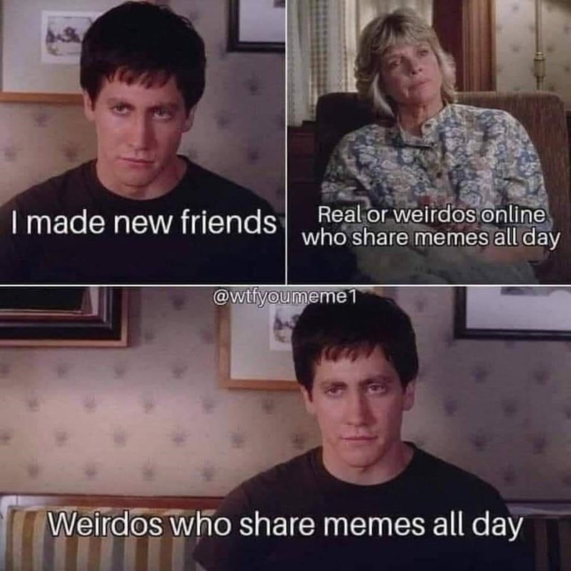 Forehead - I made new friendsReal or weirdos online who share memes all day @wtfyoumeme 1 Weirdos who share memes all day