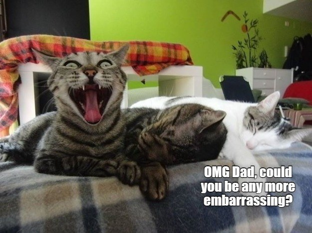 Cat - OMG Dad, could you be any more embarrassing?