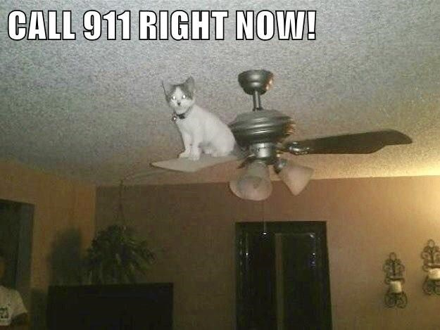 Light - CALL 911 RIGHT NOW!