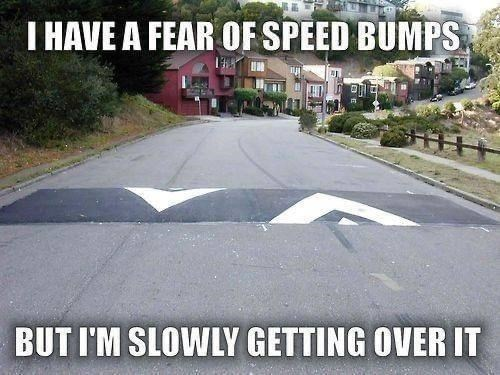 Plant - I HAVE A FEAR OF SPEED BUMPS BUT I'M SLOWLY GETTING OVER IT