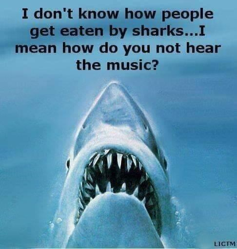 Water - I don't know how people get eaten by sharks...I mean how do you not hear the music? LIGTM