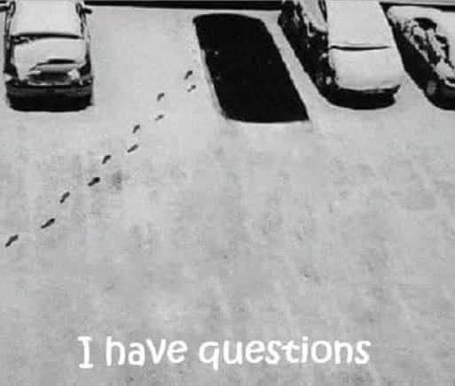 Car - I have questions