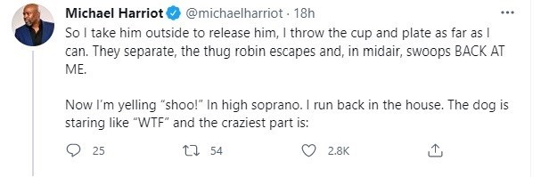 """Font - Michael Harriot So I take him outside to release him, I throw the cup and plate as far as I can. They separate, the thug robin escapes and, in midair, swoops BACK AT ME. @michaelharriot - 18h Now I'm yelling """"shoo!"""" In high soprano. I run back in the house. The dog is staring like """"WTF"""" and the craziest part is: 25 17 54 2.8K"""