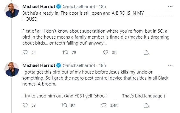 Font - Michael Harriot O @michaelharriot 18h But he's already in. The door is still open and A BIRD IS IN MY HOUSE. First of all, I don't know about superstition where you're from, but in SC, a bird in the house means a family member is finna die (maybe it's dreaming about birds. or teeth falling out) anyway. 54 t7 79 3K Michael Harriot O @michaelharriot - 18h I gotta get this bird out of my house before Jesus kills my uncle or something. So I grab the negro pest control device that resides in a