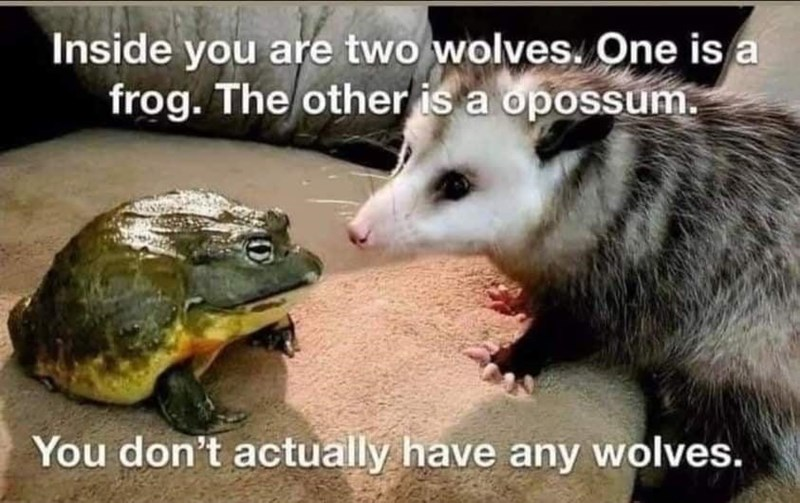 Photograph - Inside you are two wolves. One is a frog. The other is a opossum. You don't actually have any wolves.