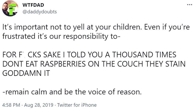 Font - WTFDAD ... @daddydoubts It's important not to yell at your children. Even if you're frustrated it's our responsibility to- FOR F'. CKS SAKE I TOLD YOU A THOUSAND TIMES DONT EAT RASPBERRIES ON THE COUCH THEY STAIN GODDAMN IT -remain calm and be the voice of reason. 4:58 PM · Aug 28, 2019 Twitter for iPhone