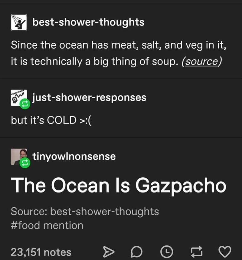 Font - * best-shower-thoughts Since the ocean has meat, salt, and veg in it, it is technically a big thing of soup. (source) response just-shower-responses but it's COLD >:( tinyowlnonsense The Ocean Is Gazpacho Source: best-shower-thoughts #food mention 23,151 notes L A
