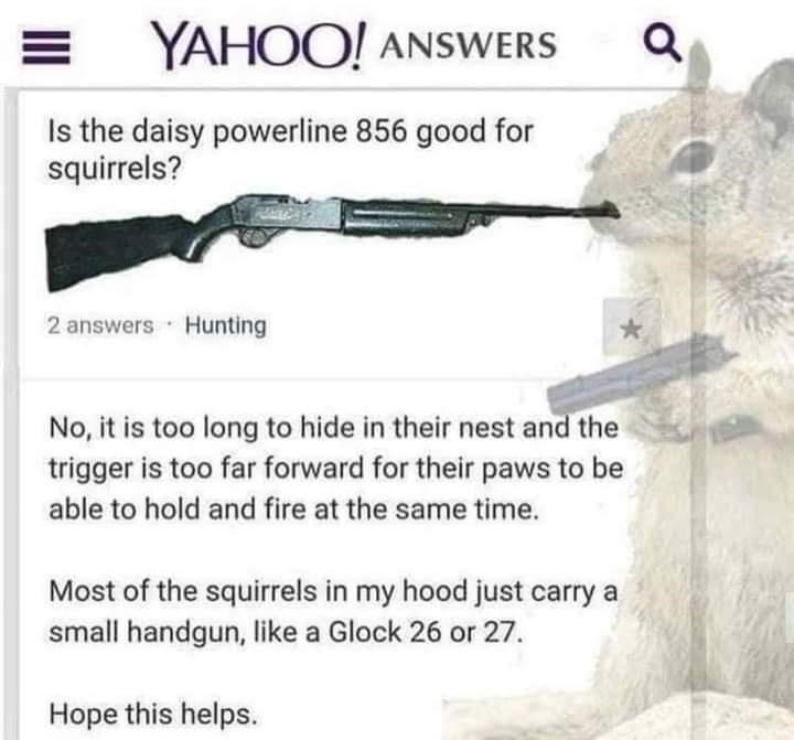 Gesture - YAHOO! ANSWERS Is the daisy powerline 856 good for squirrels? 2 answers Hunting No, it is too long to hide in their nest and the trigger is too far forward for their paws to be able to hold and fire at the same time. Most of the squirrels in my hood just carry a small handgun, like a Glock 26 or 27. Hope this helps.