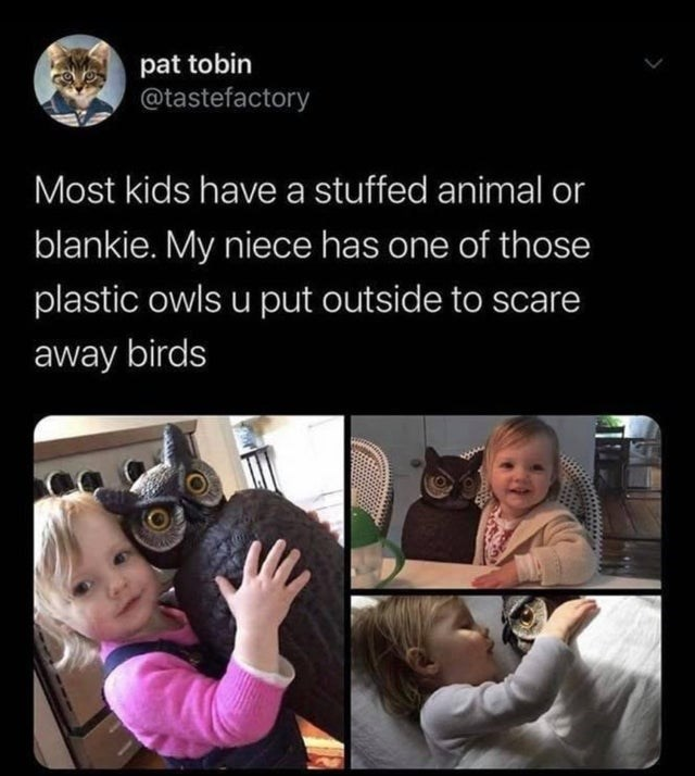 Facial expression - pat tobin @tastefactory Most kids have a stuffed animal or blankie. My niece has one of those plastic owls u put outside to scare away birds