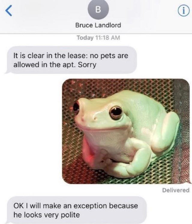 Organism - B Bruce Landlord Today 11:18 AM It is clear in the lease: no pets are allowed in the apt. Sorry Delivered OK I will make an exception because he looks very polite