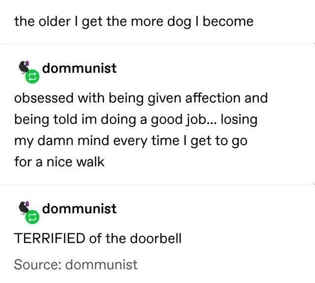 Font - the older I get the more dog I become dommunist obsessed with being given affection and being told im doing a good job... losing my damn mind every time I get to go for a nice walk dommunist TERRIFIED of the doorbell Source: dommunist