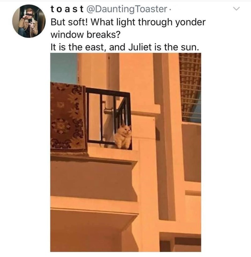 Stairs - to ast @DauntingToaster · But soft! What light through yonder window breaks? It is the east, and Juliet is the sun.