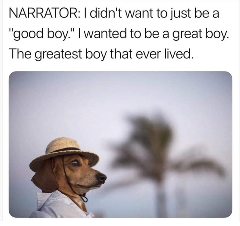 """Hat - NARRATOR: I didn't want to just be a """"good boy."""" I wanted to be a great boy. The greatest boy that ever lived."""