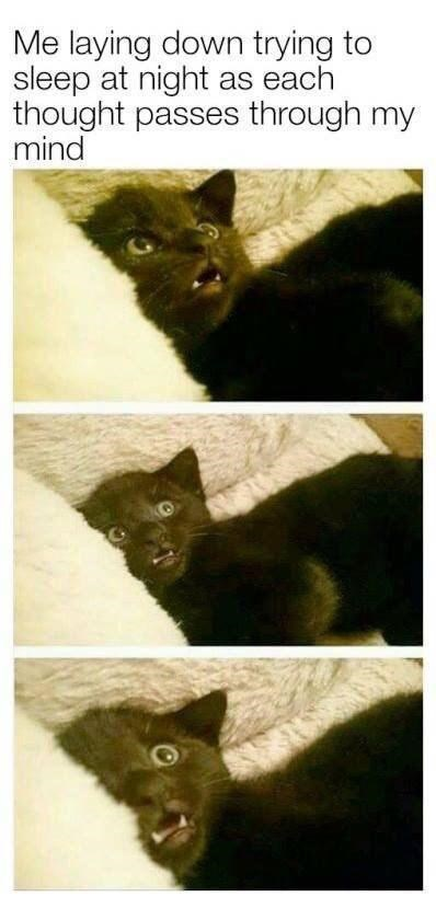 Cat - Me laying down trying to sleep at night as each thought passes through my mind