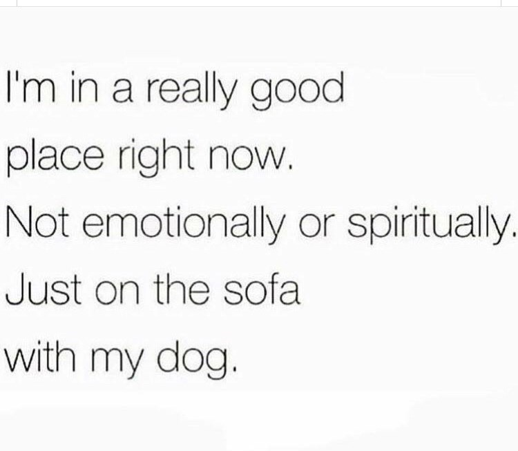 Rectangle - I'm in a really good place right now. Not emotionally or spiritually. Just on the sofa with my dog.