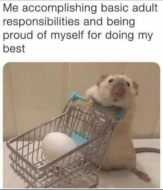 Product - Me accomplishing basic adult responsibilities and being proud of myself for doing my best