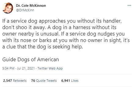 Font - Dr. Cole McKinnon @DrMcKinn If a service dog approaches you without its handler, don't shoo it away. A dog in a harness without its owner nearby is unusual. If a service dog nudges you with its nose or barks at you with no owner in sight, it's a clue that the dog is seeking help. Guide Dogs of American 5:34 PM Jul 21, 2021 - Twitter Web App 2,547 Retweets 76 Quote Tweets 6,941 Likes