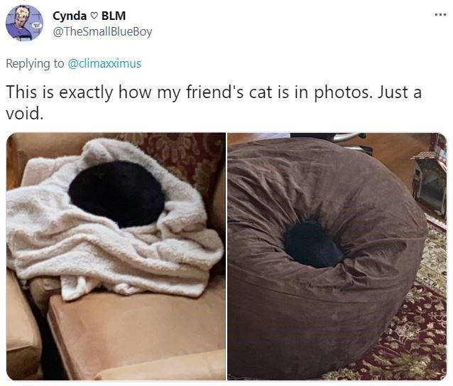 Automotive tire - Cynda v BLM @TheSmallBlueBoy ... Replying to @climaxximus This is exactly how my friend's cat is in photos. Just a void.