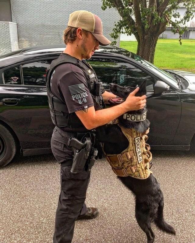 Car - POLICE K-9 POLIC POLICEK.9