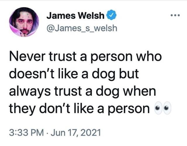Font - James Welsh @James_s_welsh Never trust a person who doesn't like a dog but always trust a dog when they don't like a person • • 3:33 PM · Jun 17, 2021