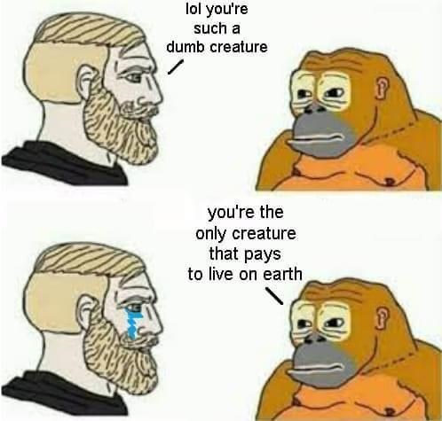 Nose - lol you're such a dumb creature you're the only creature that pays to live on earth