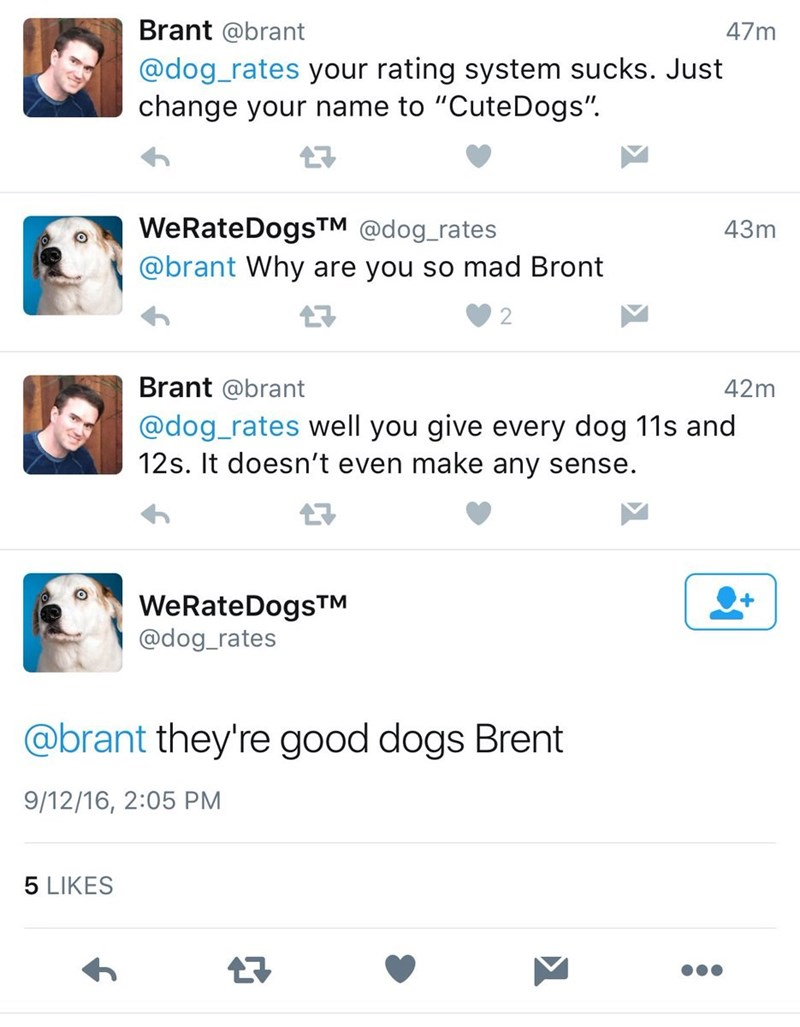 """Nose - Brant @brant 47m @dog_rates your rating system sucks. Just change your name to """"CuteDogs"""". WeRateDogsTM @dog_rates @brant Why are you so mad Bront 43m Brant @brant 42m @dog_rates well you give every dog 11s and 12s. It doesn't even make any sense. WeRateDogsTM @dog_rates @brant they're good dogs Brent 9/12/16, 2:05 PM 5 LIKES"""